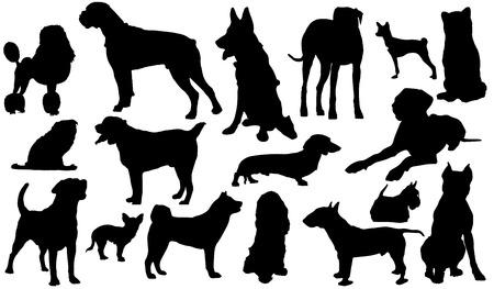 Un conjunto de siluetas de diferentes razas de perros. Ilustración vectorial