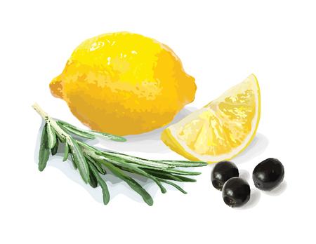 Still life. Lemon, rosemary and olives. Vector illustration. Illustration