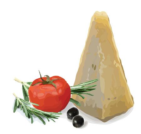Still life. Parmesan, ripe tomato, olives and rosemary. Vector illustration.