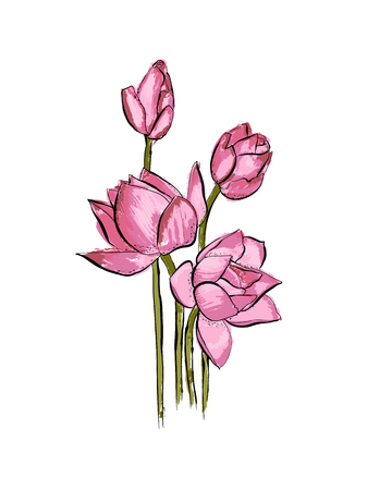 Lotus flower bouquet isolated on white background Spring flowers. Hand drawn vector illustration.