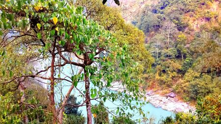 Sevoke siliguri, teesta river flows with a beautiful tree view and mountain