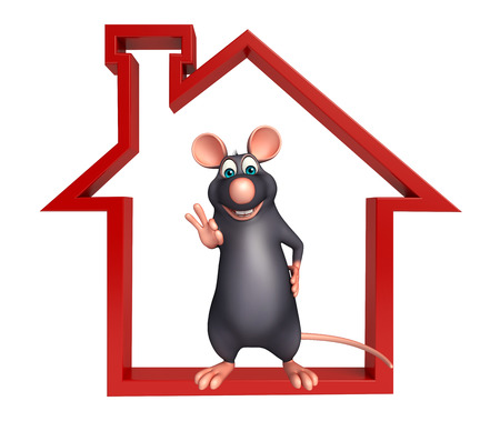 whisker characters: 3d rendered illustration of Rat cartoon character with home sign