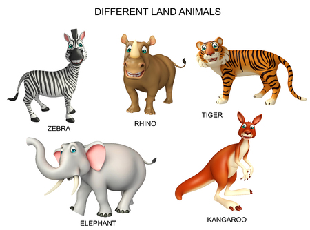 wildlife conservation: 3d rendered illustration of animal chart