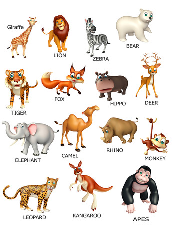 wild animal: 3d rendered illustration of wild animal chart