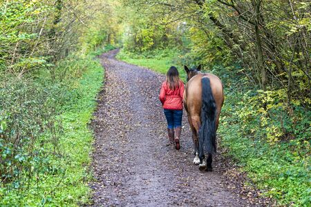 UK, Sheffield - Oct 2020: Woman in a red jacket walking with a horse along a woodland trail