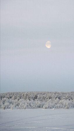 Daylight moon, in morning sky rises over frozen lake