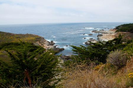 west  coast: West Coast View