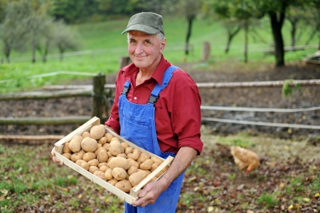 Happy farmer show his organic potato  photo