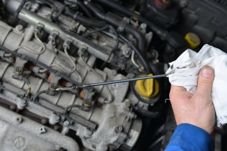 oil change: Auto mechanic checking engine oil level