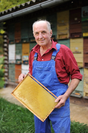 Farmer, Beekeeper in front of apiary holding a frame of honeycomb  photo