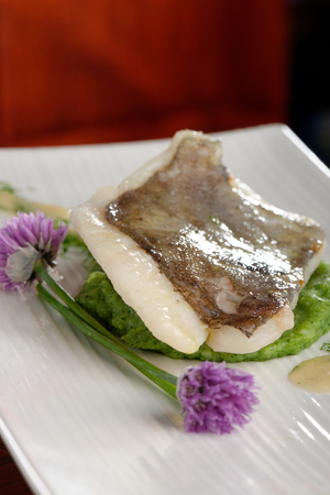 Fine dining, John Dory fish fillet on spinach puree  photo