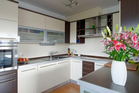 cuisine fond blanc: Int�rieur de style maison moderne, cuisine