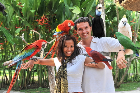bali: Young couple with tropical birds on bali island Indonesia