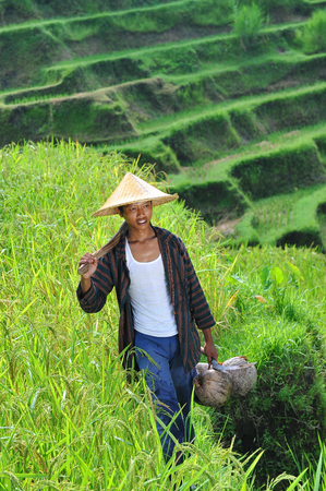 Portrait of traditional organic rice farmer with his tools  Shoot on Bali island Imagens