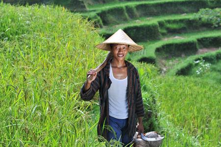 Portret van traditionele biologische rijst boer met zijn gereedschap Schiet op Bali eiland