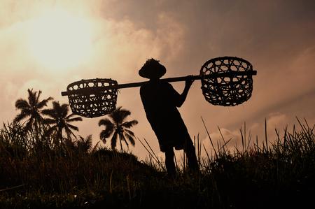 hombre con sombrero: Granjero con utensilios de madera para preparar el campo de arroz