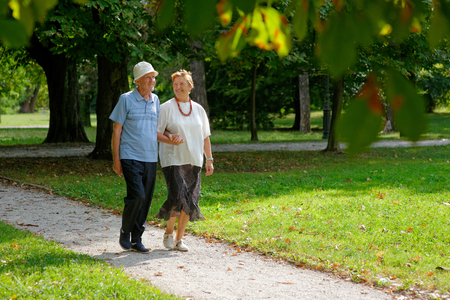 older couple: Senior happy couple walking in the park  Stock Photo