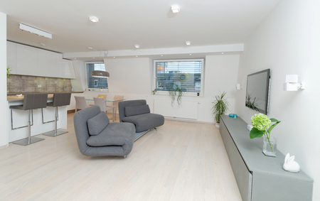 Modern living room interior with kitchen  photo