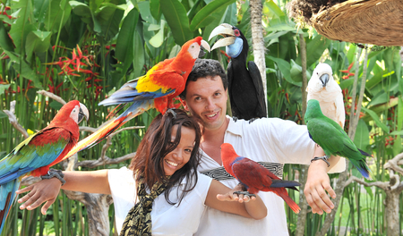 Young couple with tropical birds on bali island Indonesia Imagens