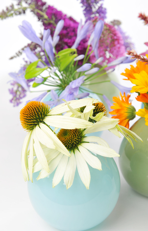 homoeopathic: Echinacea, Calendula and other herbal flowers Stock Photo