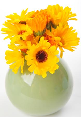 Calendula. Marigold flowers photo