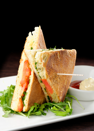Healthy veggie panini sandwiches, Freshly grilled panini with olives, basil leaves, fresh red and green peppers, tomatoes, and mozzarella cheese served on ciabatta bread with cream ketchup sauce Imagens