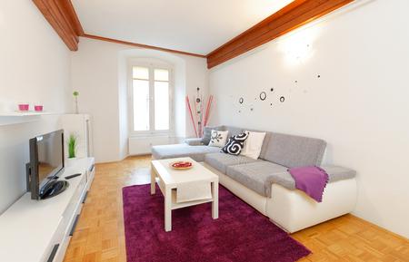 Modern living room with wood floor photo