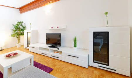 Modern living room with wood floor photo