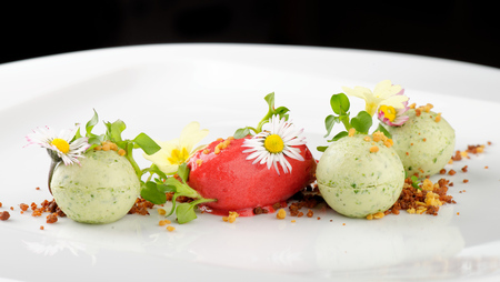 Fine dining dessert, Strawberry/Kiwi ice cream, mousse and spices Stock Photo