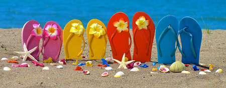 Flip flops, seashell and starfish with tropical flowers on sandy beach Stockfoto