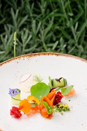 haute cuisine: Haute cuisine appetizer