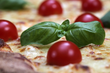 Pizza with tomato and basil photo