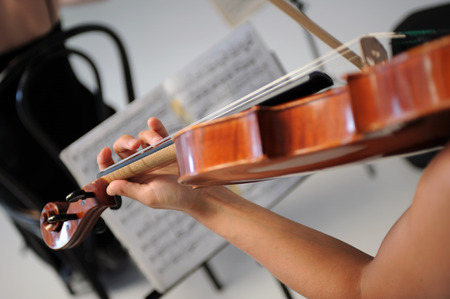 musician plays the violin in the orchestra photo