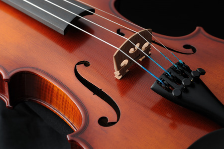 musical instrument violin photo