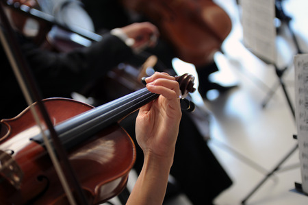 musician plays the violin in the orchestra Reklamní fotografie