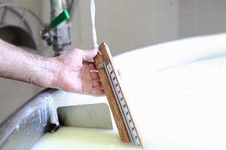 vats: dairy hands that control the temperature of the milk to the cheese Stock Photo