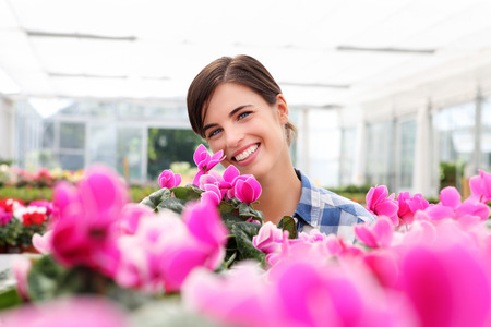smiling woman in a greenhouse: smiling woman, in greenhouse with cyclamen plants Stock Photo