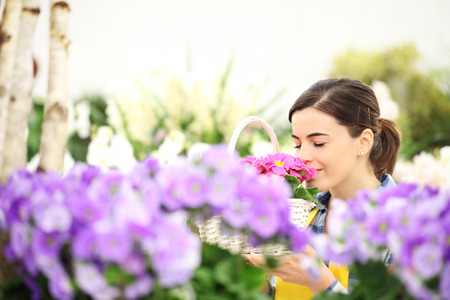 springtime woman in flowers garden smell the primroses in wicker basket Banque d'images