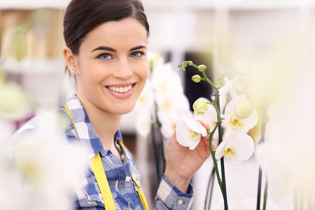 nicety: florist woman smiling with flowers orchids Stock Photo