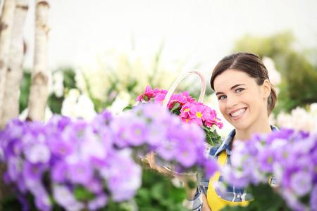 primroses: springtime, woman smiling with white basket flowers of purple primroses