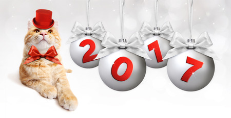 ginger cat and silver christmas ball with silvery satin ribbon bow and red 2017 text Stock Photo