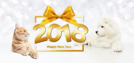 concept van het dieren het gelukkige nieuwe jaar, kat en hond met het kader van de giftdoos en de gouden boog van het satijnlint. Stockfoto