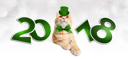 Text 2018 with Christmas magic ginger cat with green hat.