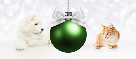 manifest: Dog and cat with christmas green ball on white background.