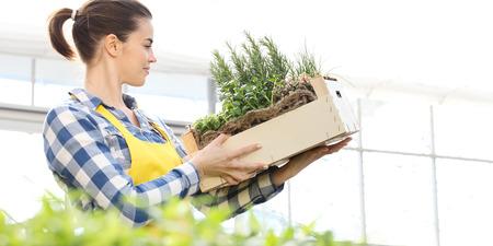 femme souriante avec une boîte en bois pleine d'herbes sur fond blanc, concept de jardin de printemps.