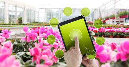 gardening and flowers e-commerce concept, online shopping on digital tablet, hand pointing and touch screen with green empty icons, spring flower plants in greenhouse background. Stok Fotoğraf