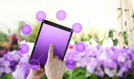 gardening and flowers e-commerce concept, online shopping on digital tablet, hand pointing and touch screen with purple empty icons, spring flower plants background. Stok Fotoğraf