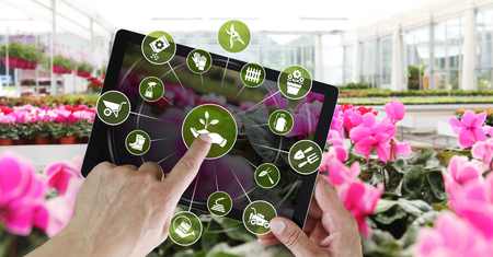 gardening equipment e-commerce concept, online shopping on digital tablet, hand pointing and touch screen with green tools icons, spring flower plants background. Stok Fotoğraf