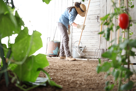 woman in the vegetable garden with rake from the wooden wall of tools, healthy organic food produce concept.