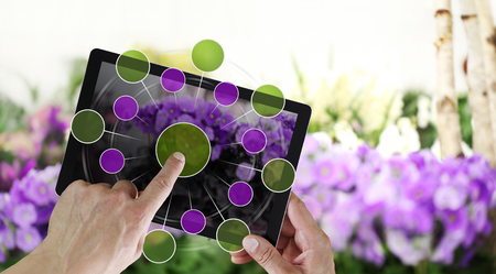 gardening and flowers e-commerce concept, online shopping on digital tablet, hand pointing and touch screen with empty icons, spring flower plants background.